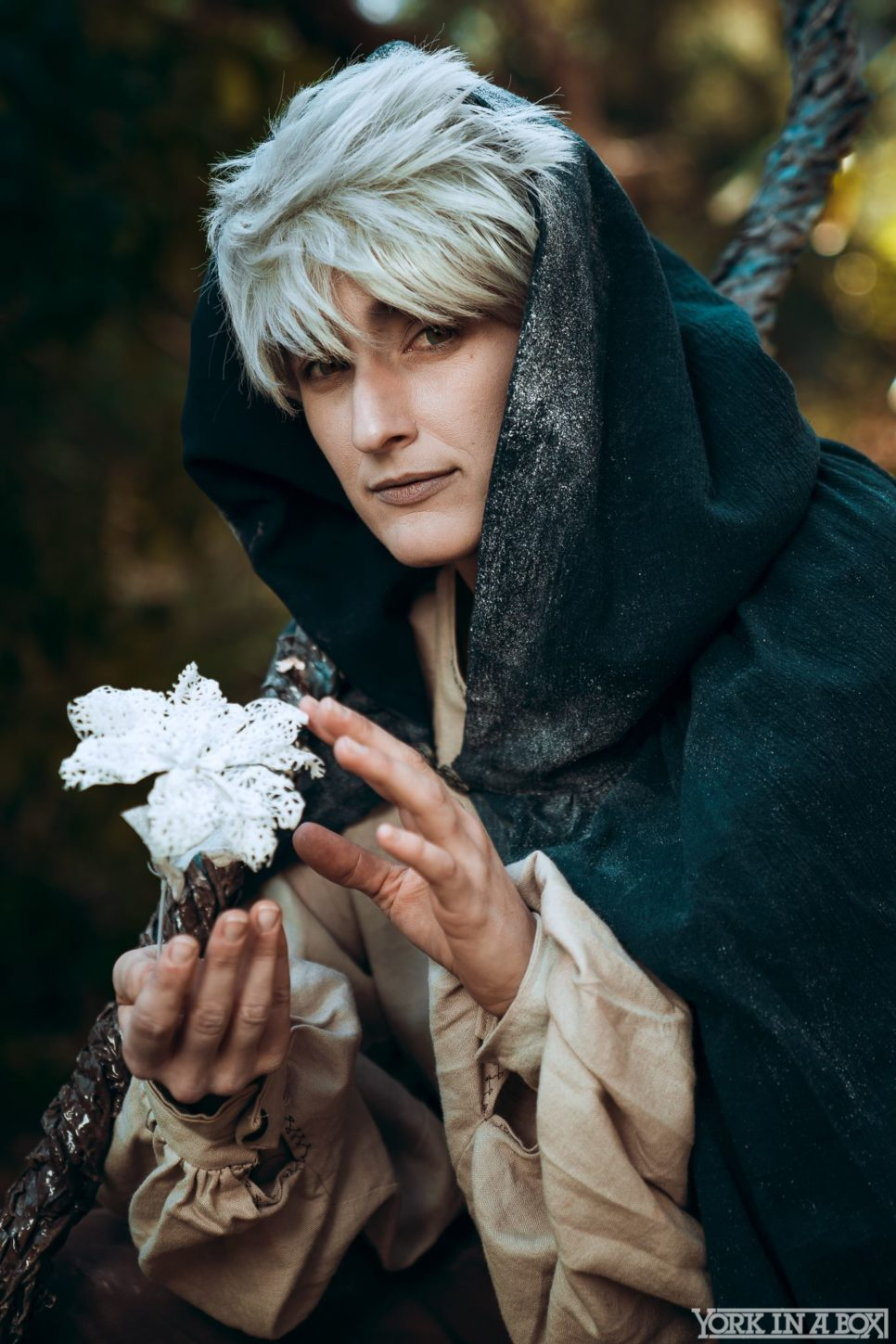 Jack Frost | Rise of the Guardian