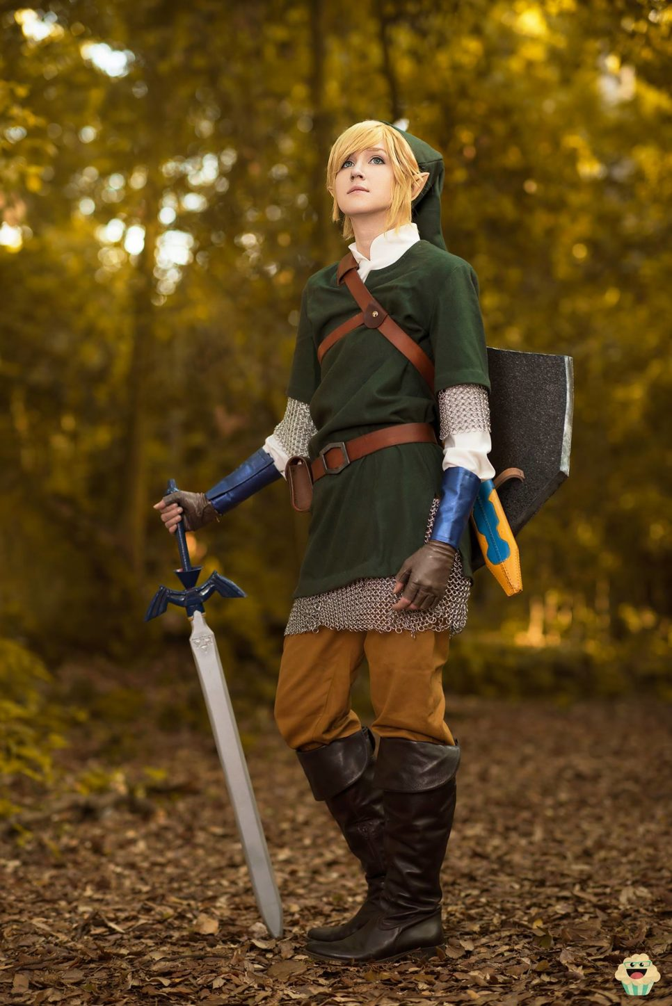 Link | The Legend of Zelda
